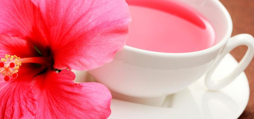 As propriedades do chá de hibisco – entenda por que ele emagrece