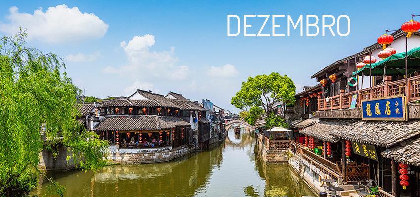 Horóscopo Chinês: dezembro é o mês Rato – veja o que ele te reserva
