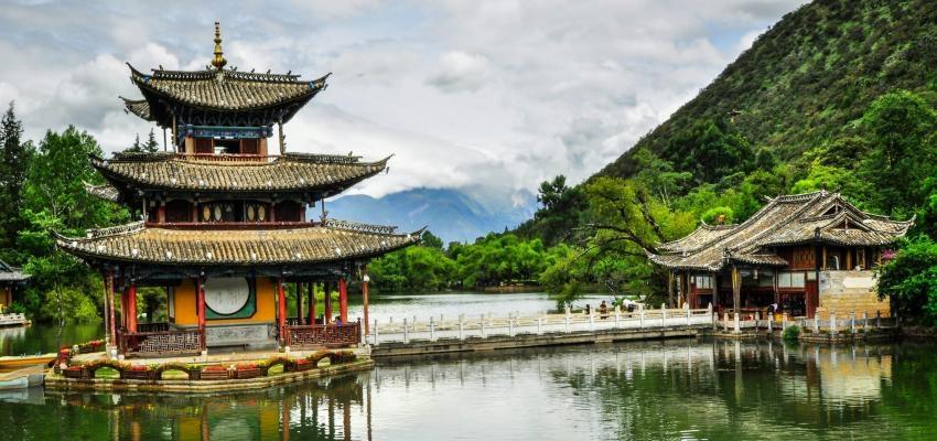 Horóscopo Chinês – já começou o mês do Coelho, veja o que ele trará!
