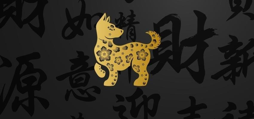 Horóscopo Chinês: outubro é o mês do Cão – veja o que ele te reserva