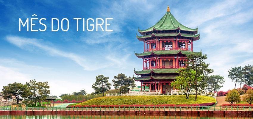 Horóscopo Chinês Fevereiro – Já estamos no mês do Tigre, veja as previsões!