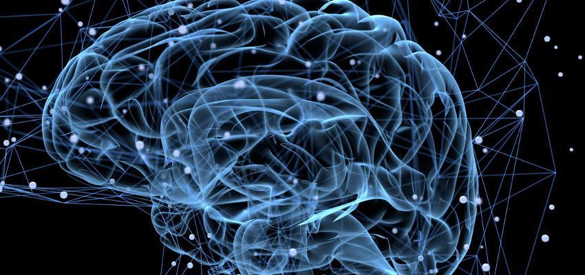 Que tipo de inteligência você possui? Descubra!
