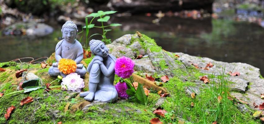 Jikiden Reiki - o que é e quais são suas diferenças?