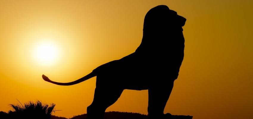 Astrologia: o Sol está em Leão! Veja como isso afeta o seu dia a dia