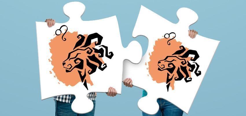 Compatibilidade dos Signos: Leão e Leão
