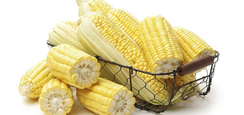 Simpatia do milho – consiga dinheiro o mais rápido possível