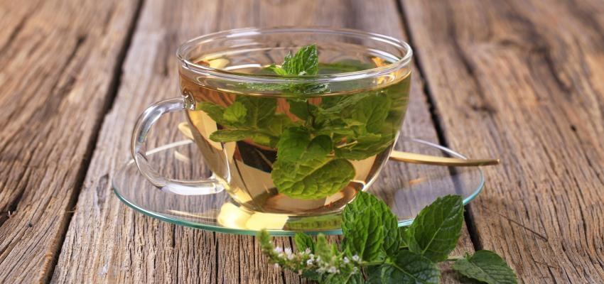 Conheça o poder do chá de Hortelã