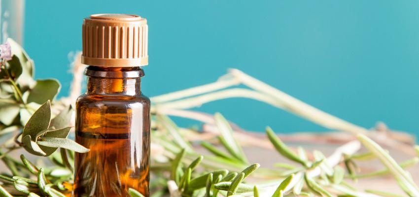 As mil e uma utilidades do óleo essencial de alecrim