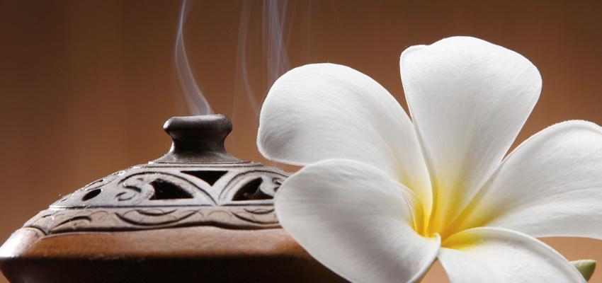 Óleos essenciais podem ser usados como repelentes naturais? Descubra!