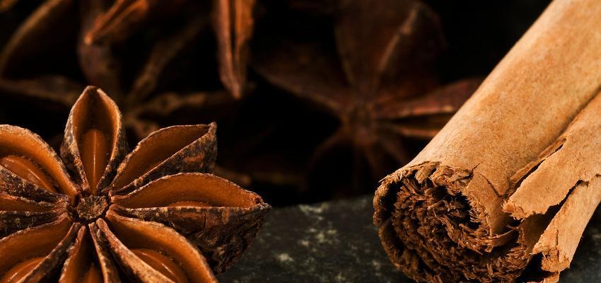 Limpeza + aromaterapia – torne o seu lar mais saudável e cheiroso com óleos essenciais