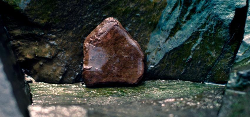 Como fazer um amuleto com a semente Olho de Boi?