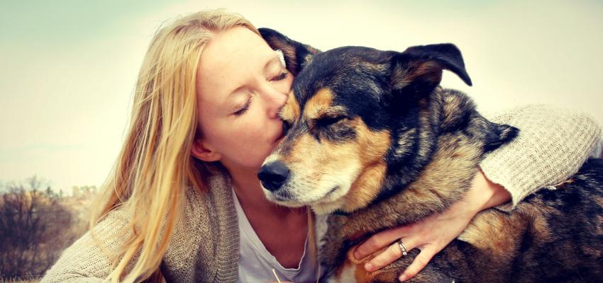 Oração para encontrar animais de estimação perdidos