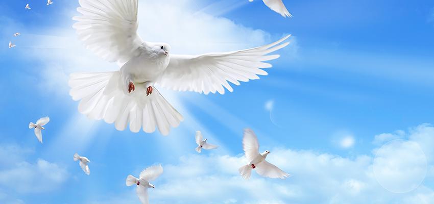 Oração Poderosa pela paz no mundo