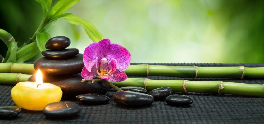 Os 7 principais símbolos de prosperidade do Feng Shui
