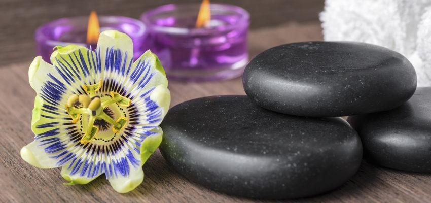 Conheça os benefícios da passiflora contra insônia, estresse, depressão e muito mais.