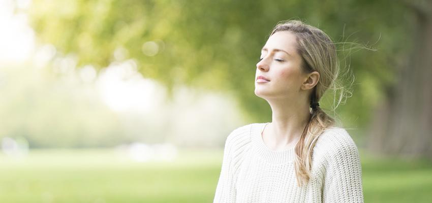 Salmos do dia: obtenha luz e proteção com o Salmo 85