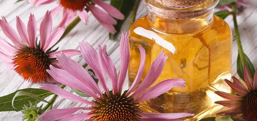 Qual o perfume ideal para o seu negócio? A aromaterapia responde!
