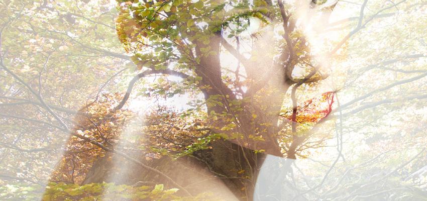 5 sinais de que você já passou por uma reencarnação