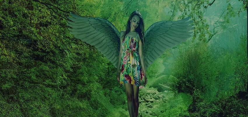 Rituais dos anjos: alcance as graças que deseja em 2017