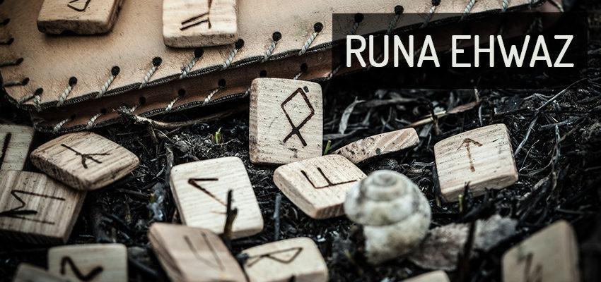 Runa Ehwaz: Crescimento harmônico