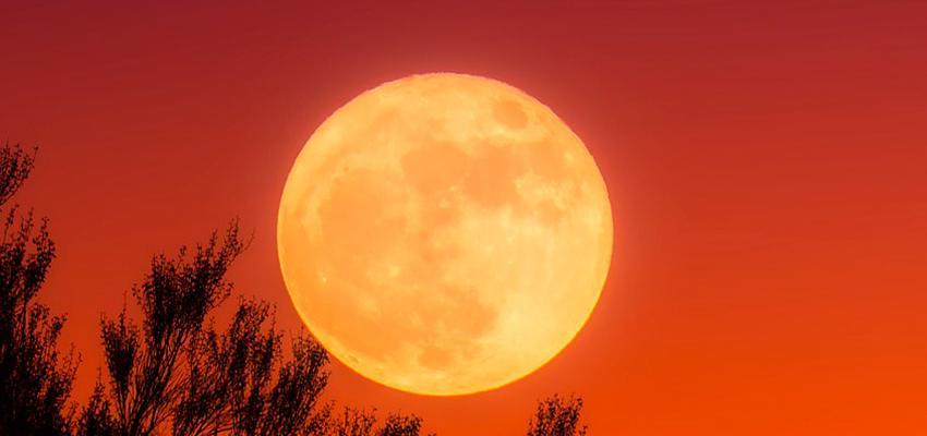 Saiba como as fases da Lua influenciam seus negócios