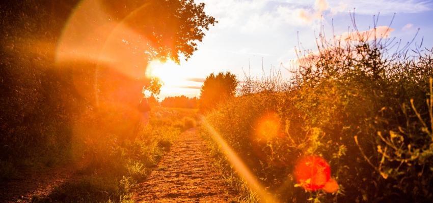 Salmo 31: significado das palavras de lamentação e fé
