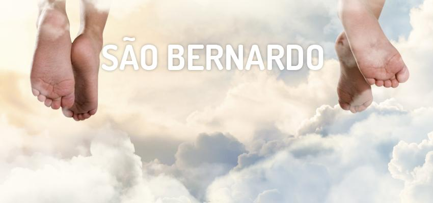 Santo do dia 12 de janeiro: São Bernardo