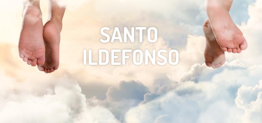 Santo do dia 23 de janeiro: Santo Ildefonso