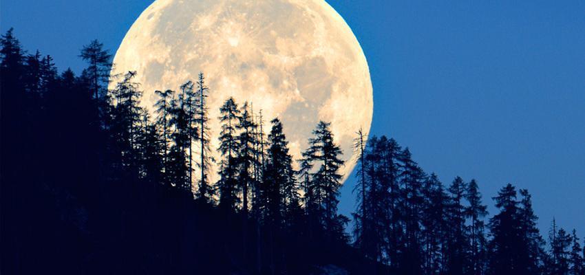 Signo Lunar: aprenda como descobrir o seu!