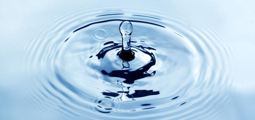 Signos da Água: os trio imaginativo e cheio de percepções