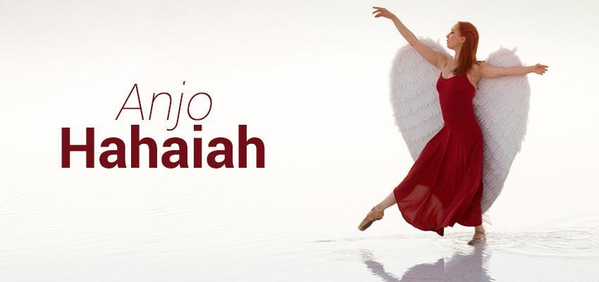 Tarot dos anjos – Hahaiah, o anjo do amor