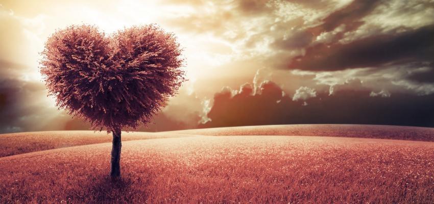 Oração a Oxalá para ter amor verdadeiro e sucesso