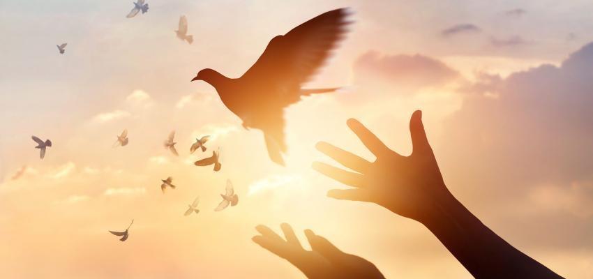 Garrafinha mágica para limpeza espiritual