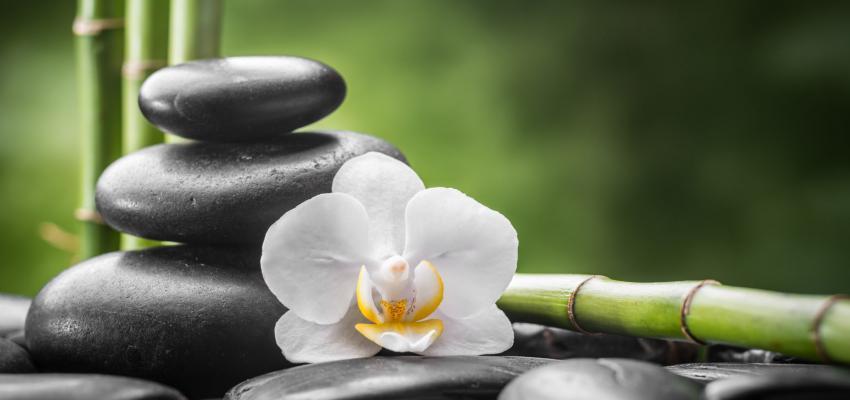 Feng Shui alerta: não pendure coisas atrás da porta. Saiba o por quê