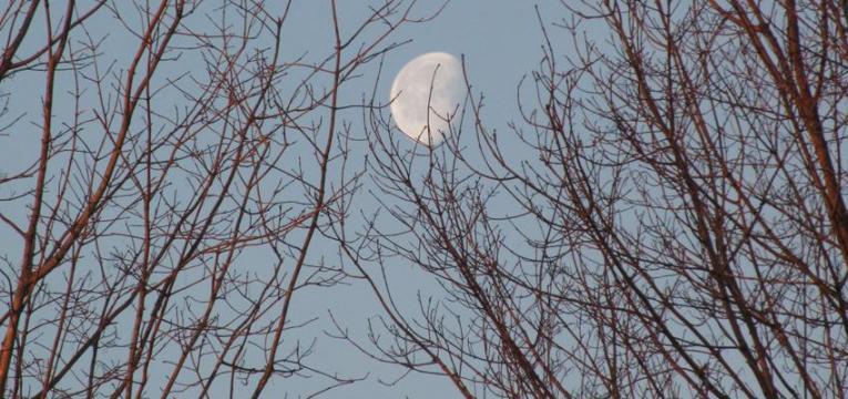 Lua Minguante em 2018