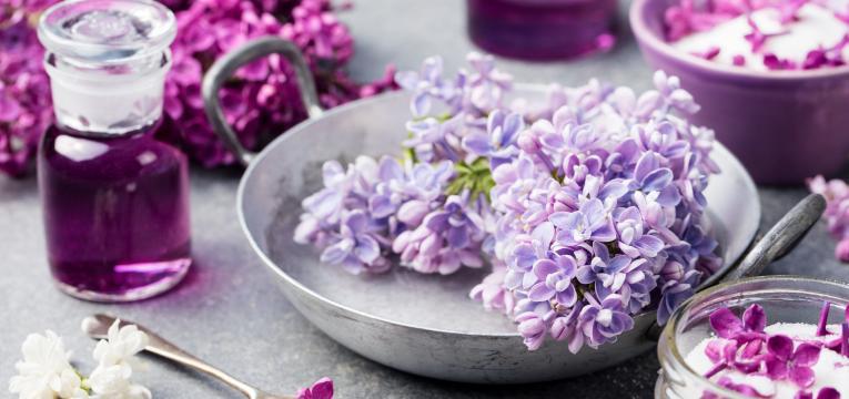 florais para tratar alcoolismo