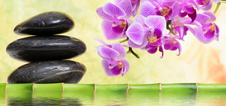 dicas do feng shui para prosperidade