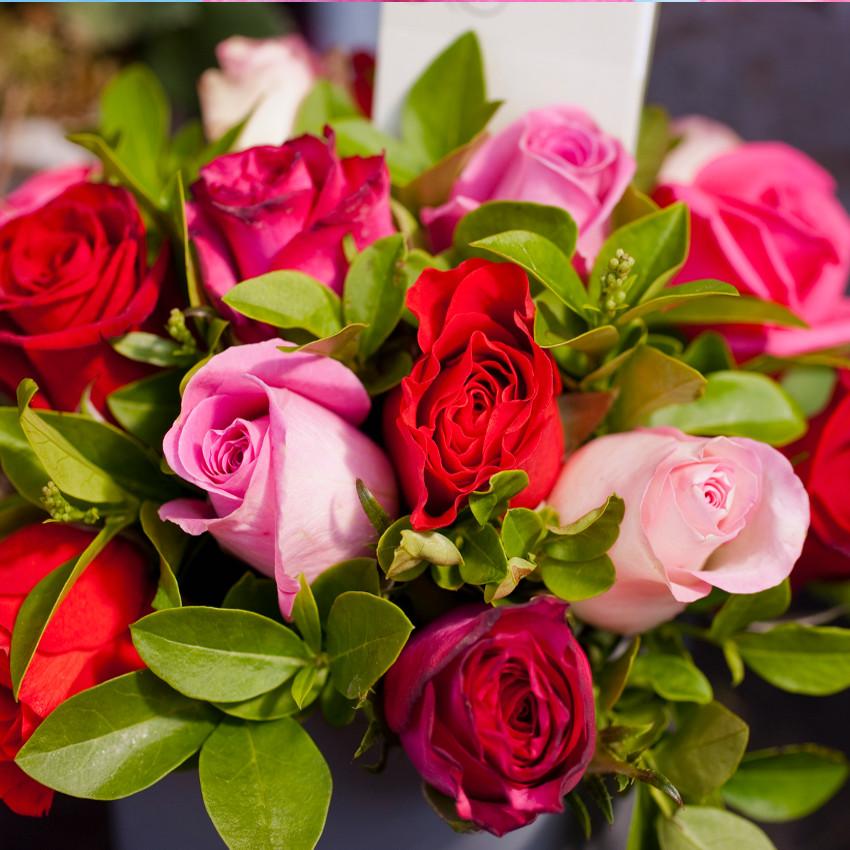 Horoscope des fleurs BALANCE