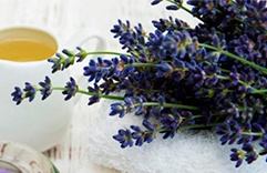 óleos essenciais para a pele: Lavanda
