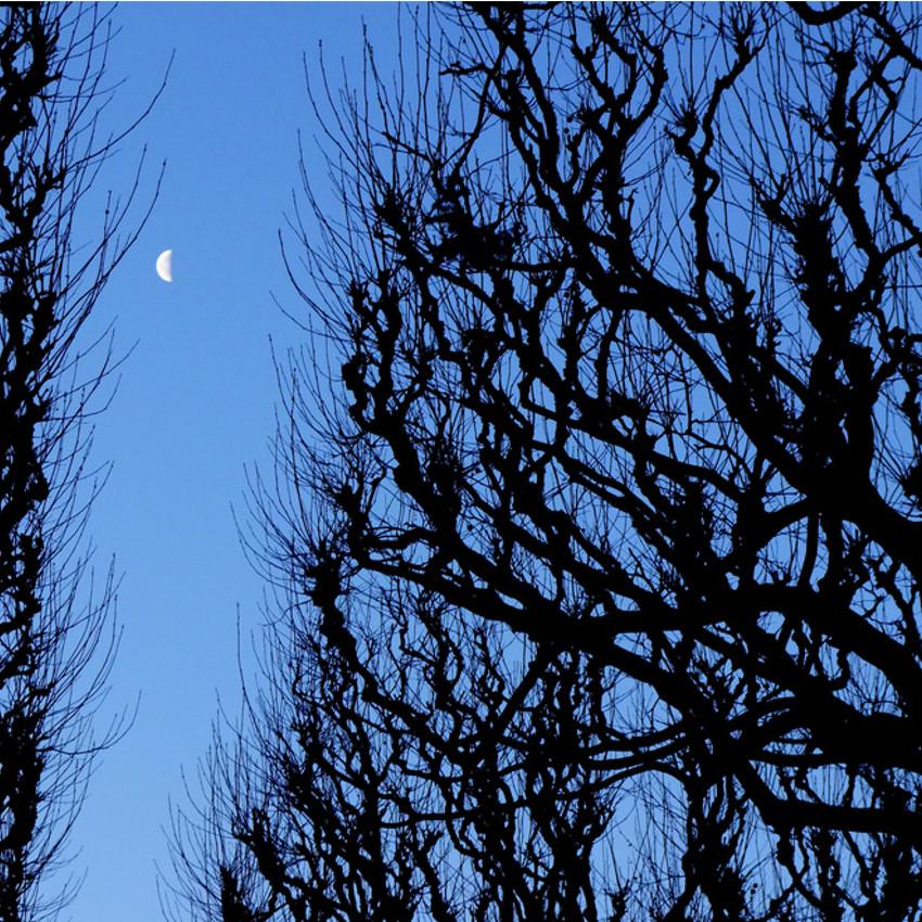 A influência da lua no corte de cabelo - Lua Minguante